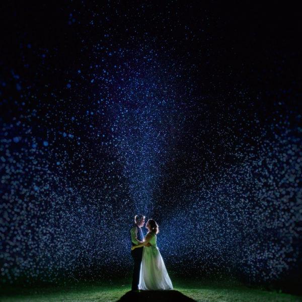 Deer Park Devon Wedding Photography