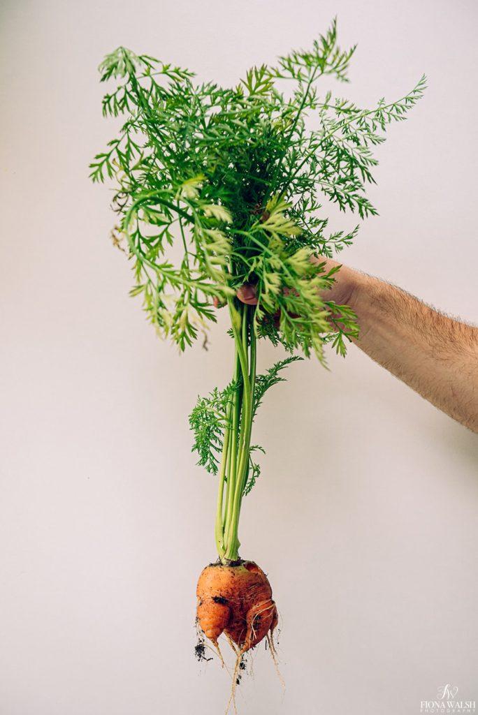 food-photographer-somerset3