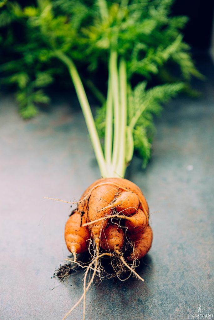 food-photographer-somerset
